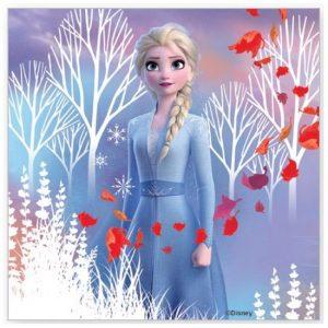 Napkins 20pk Disney Frozen 2 Serviettes E5831
