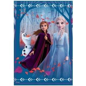 Party Bags 8pk Disney Frozen 2 8832421