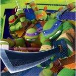 Lunch Napkins 16pk Teenage Mutant Ninja Turtles TMNT Serviettes 511194